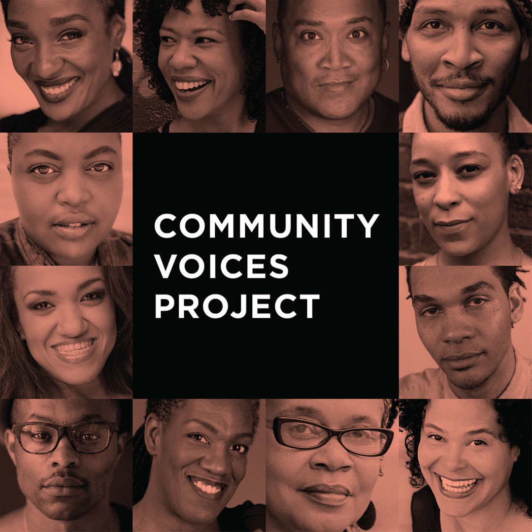 Preview image for Community Voices Project