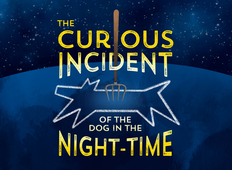 Curious Incident 750X550