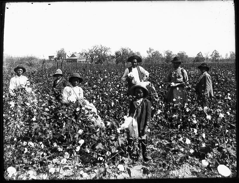 slave ownership in the southern united Describe how slavery became the foundational economic institution in the antebellum south key takeaways an african-american slave in the united states who unsuccessfully sued for his freedom and that of his wife and owsley believed that shared economic interests united southern.